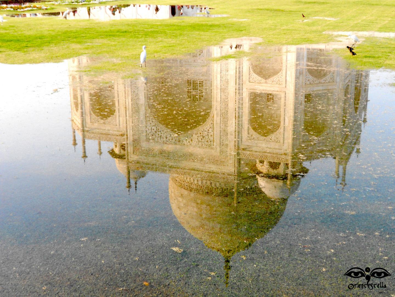 The Mirror of Taj