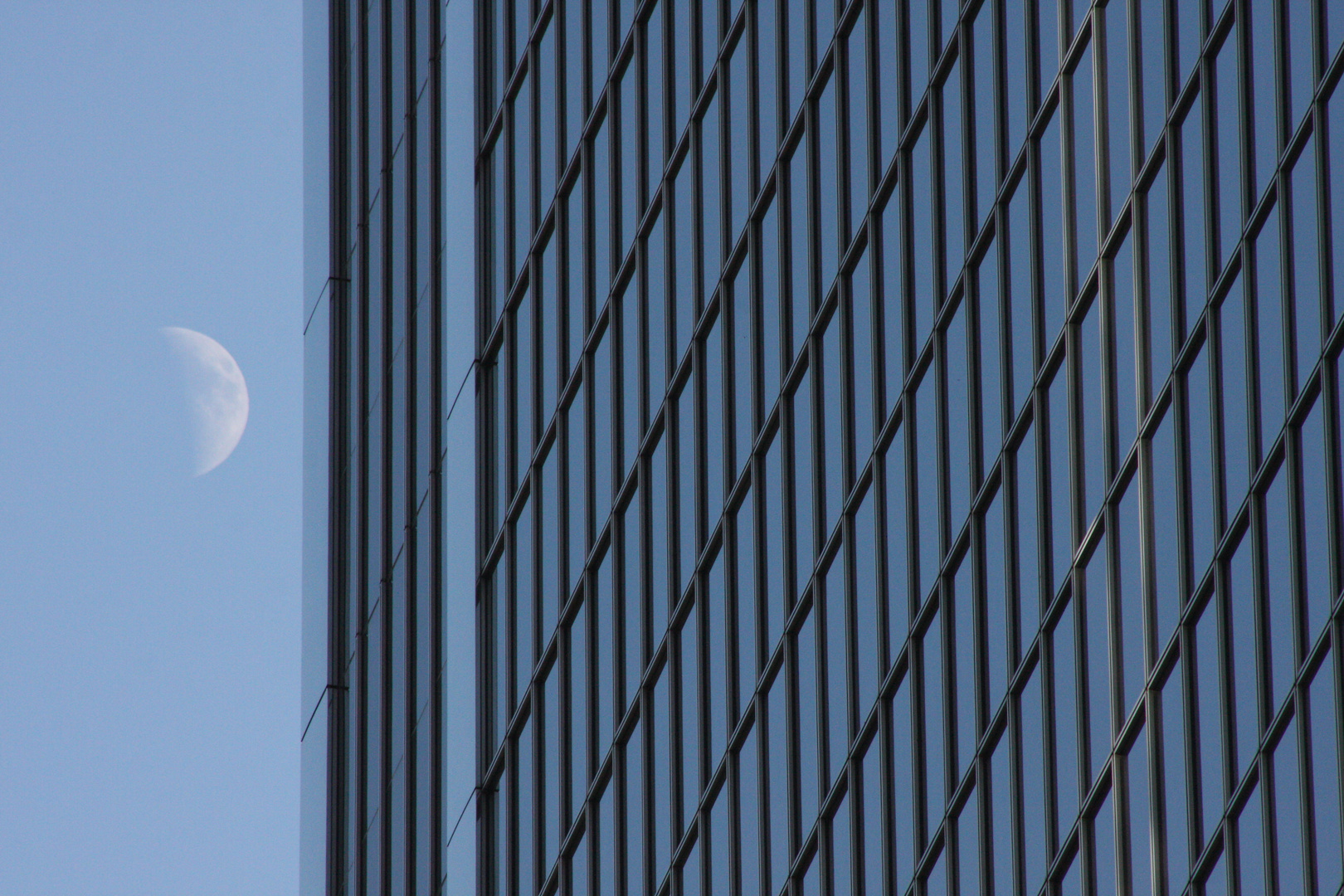 """THE MOON LIVES ON 50TH FLOOR"""