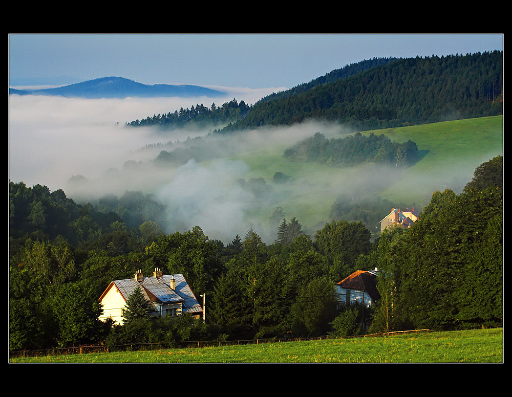 ~ The morning mist ~