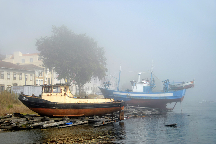 The old Boatyard in a foggy day