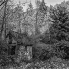 The old little cabin