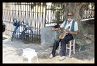 The old man's lyra
