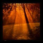 the orange way...