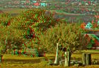 The Orchard 3D