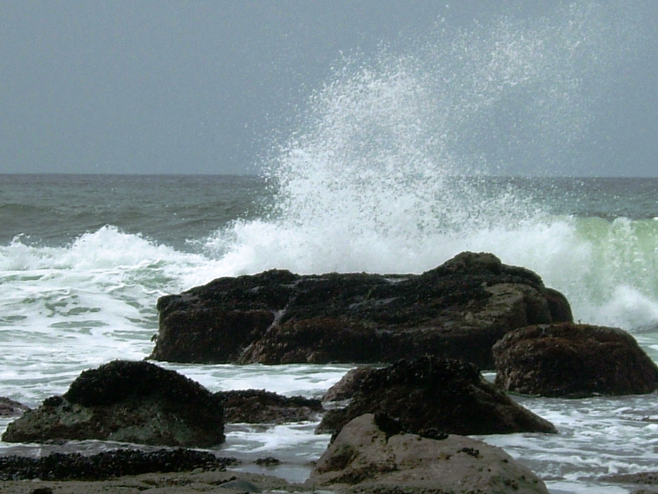 The Pacific Ocean at play