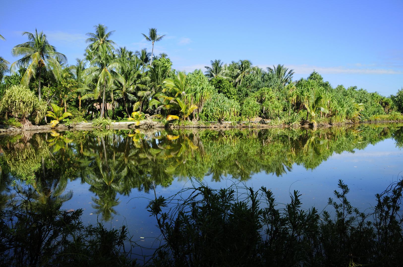 The Paradise Tahiti