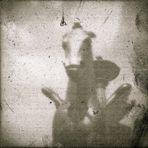 The Pegasus (Treated Negative)