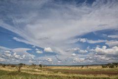 the Plains ..