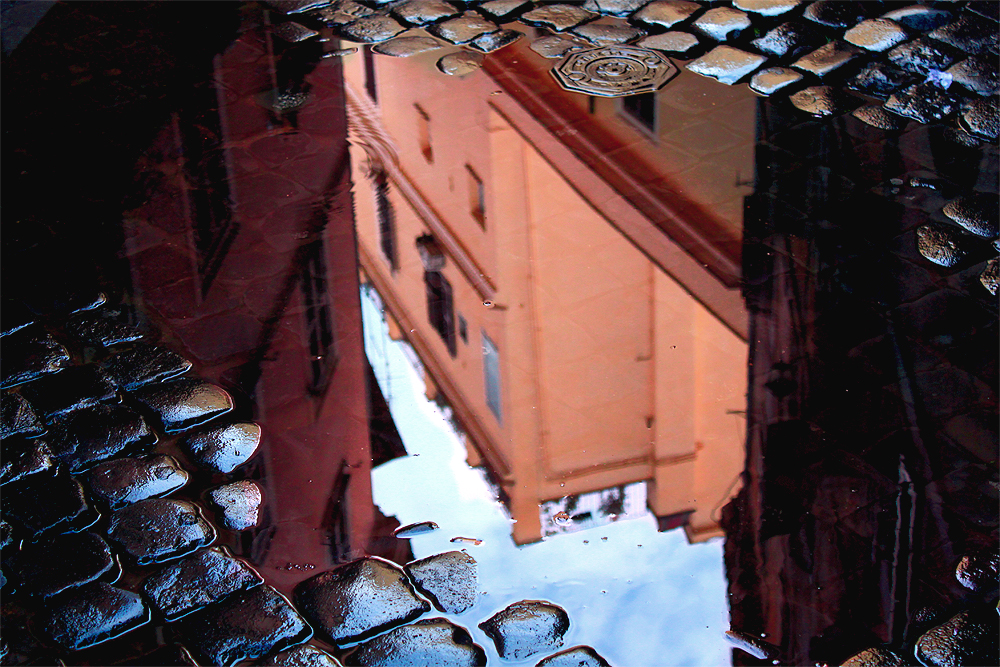 the reflection of rome