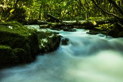 The river flows in you