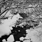 The river in b/w