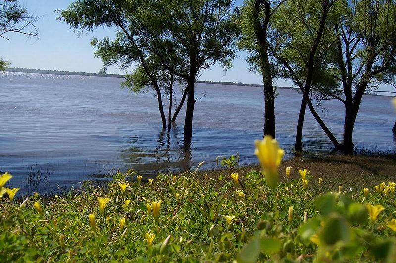The River Uruguay / South America