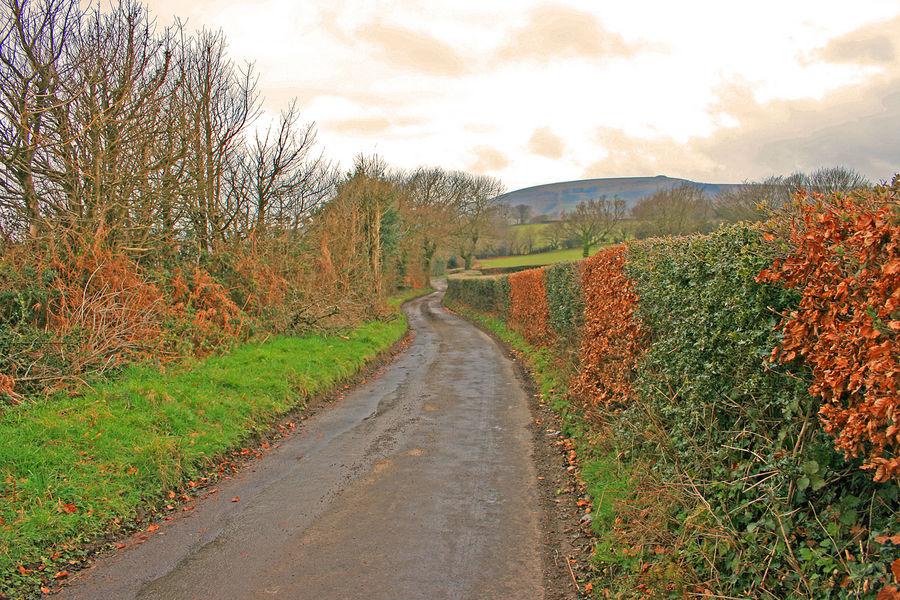 The Road to Twmbarlwm