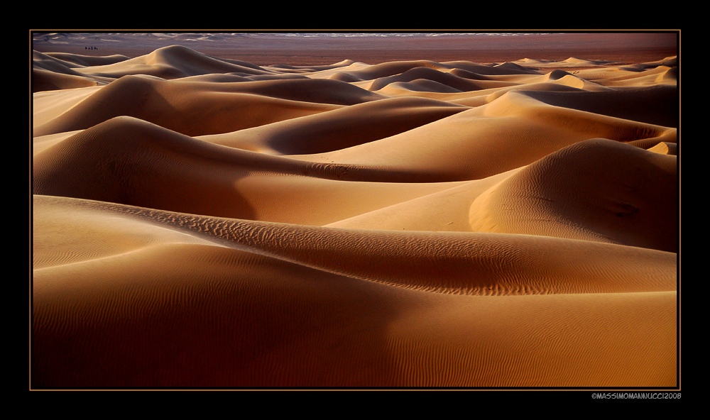The Sensual Desert