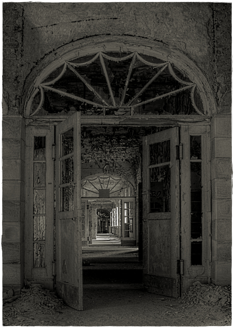the silent halls