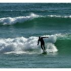 The surfer.