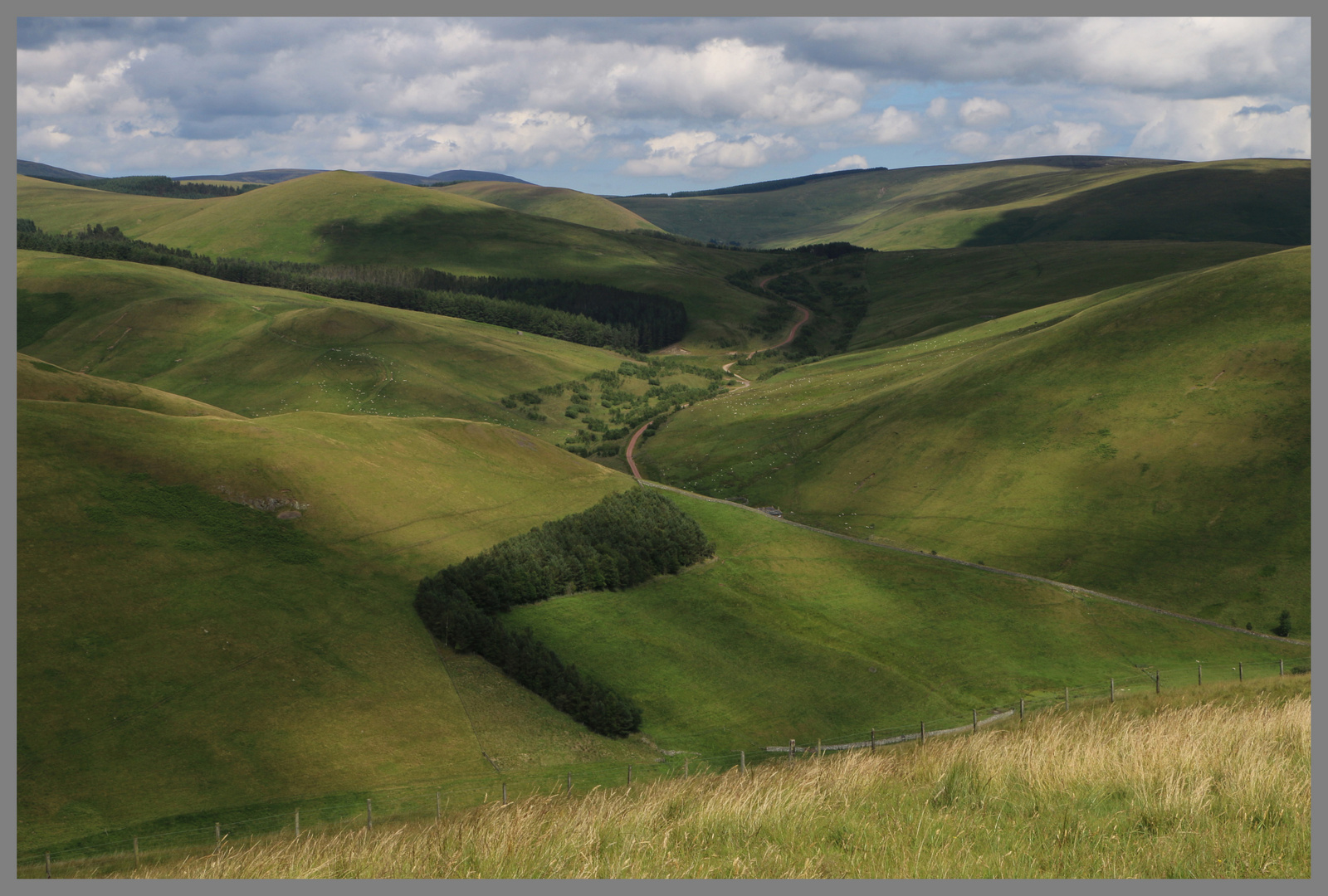 the track to uswayford 5 Cheviot Hills
