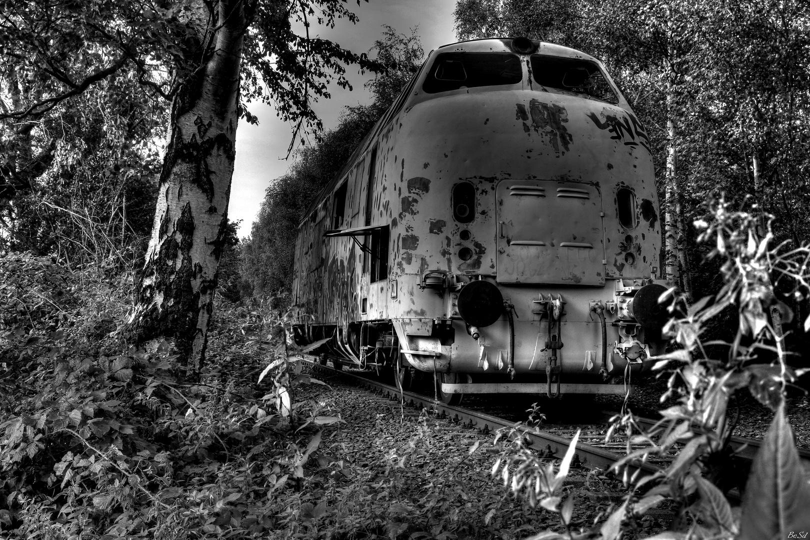 the train...
