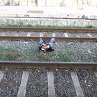 the train suicide
