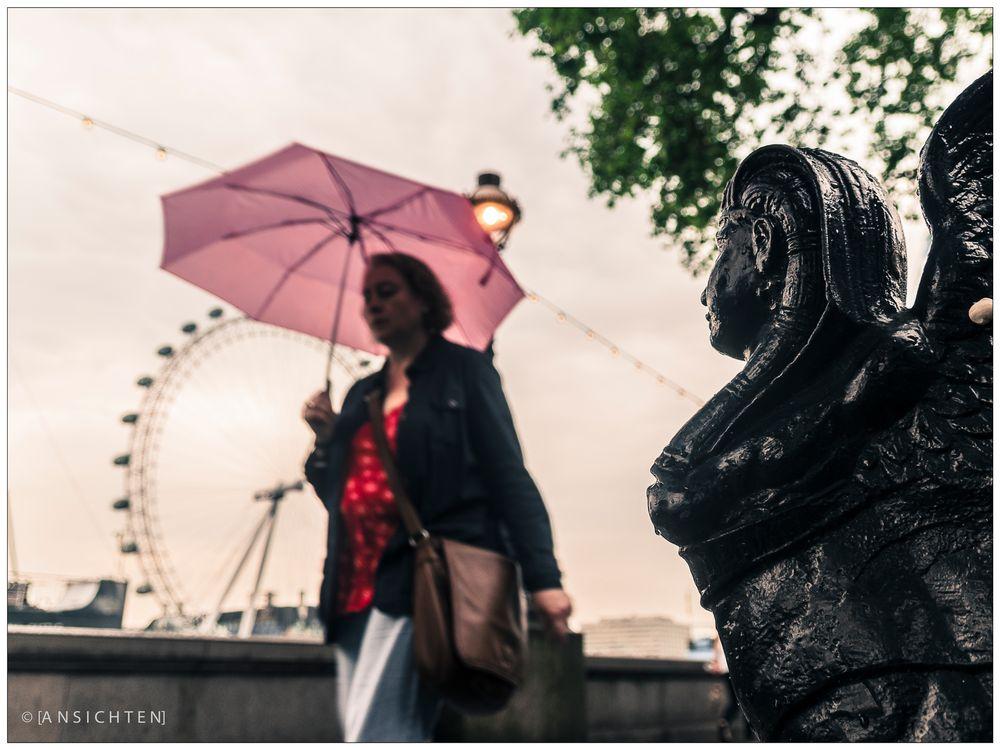[the umbrella]