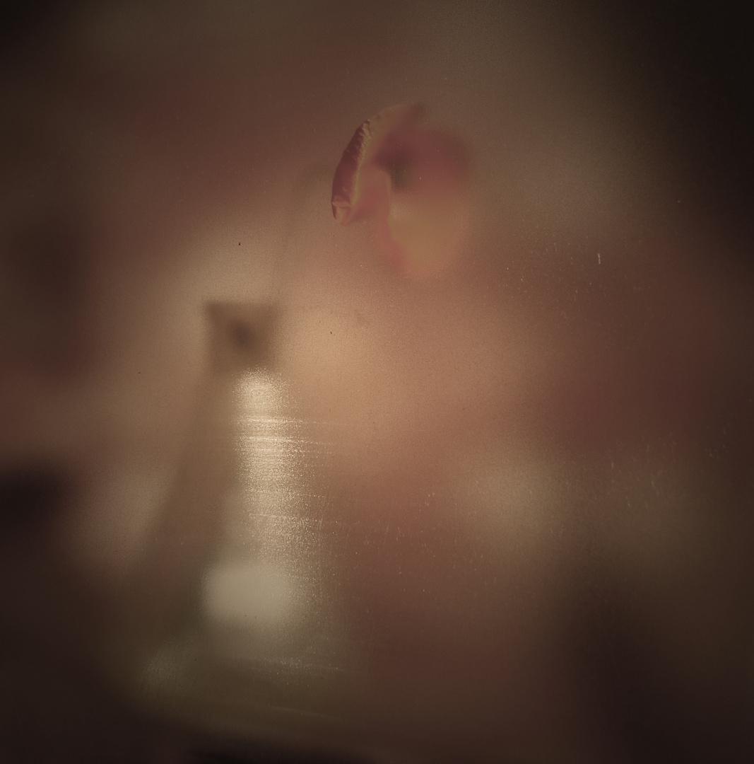 The vase with poppy.