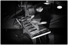 The Vibraphone Player