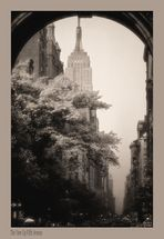 The View Up Fifth Avenue