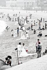 The Wedding Beach