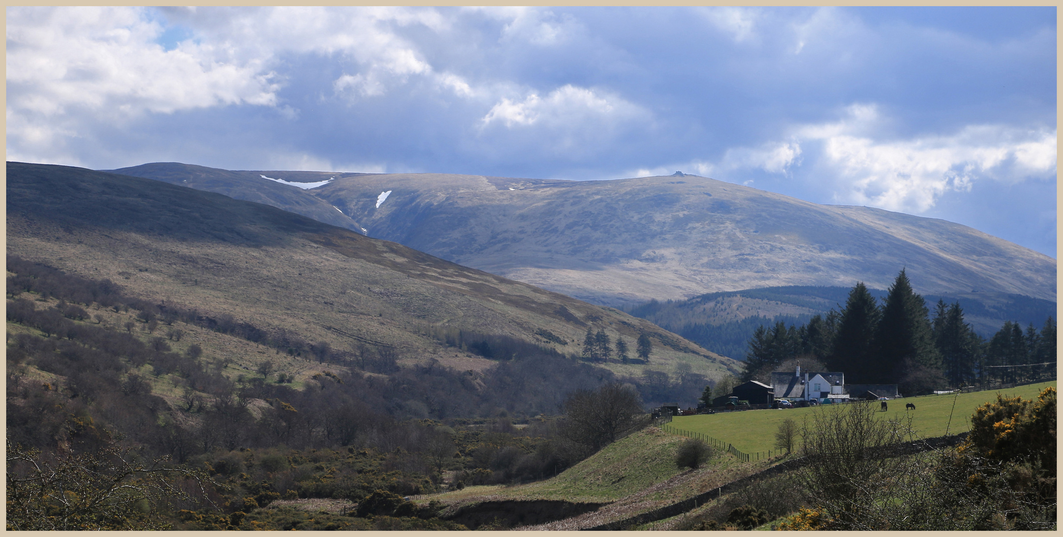 the Whitehall and the Cheviot 6