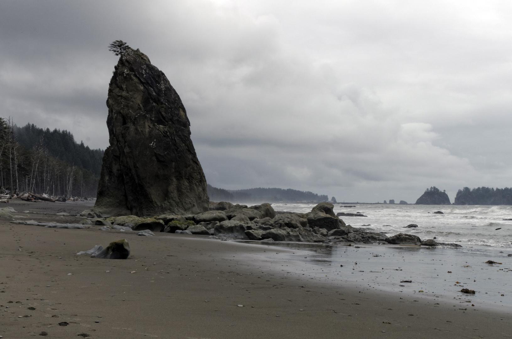 The Wild North-Western Coast line I (in Washington State)