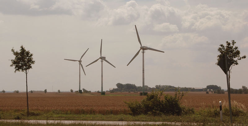 The wind field