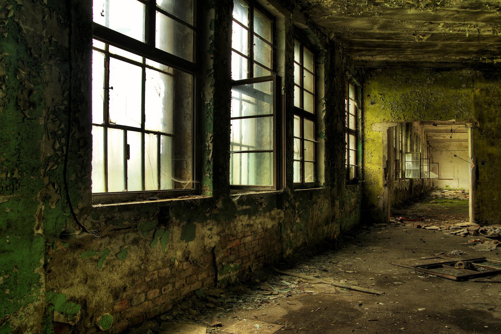 *** the windows are ........ ***