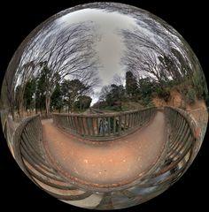 The winter sky promenade-2(circle)