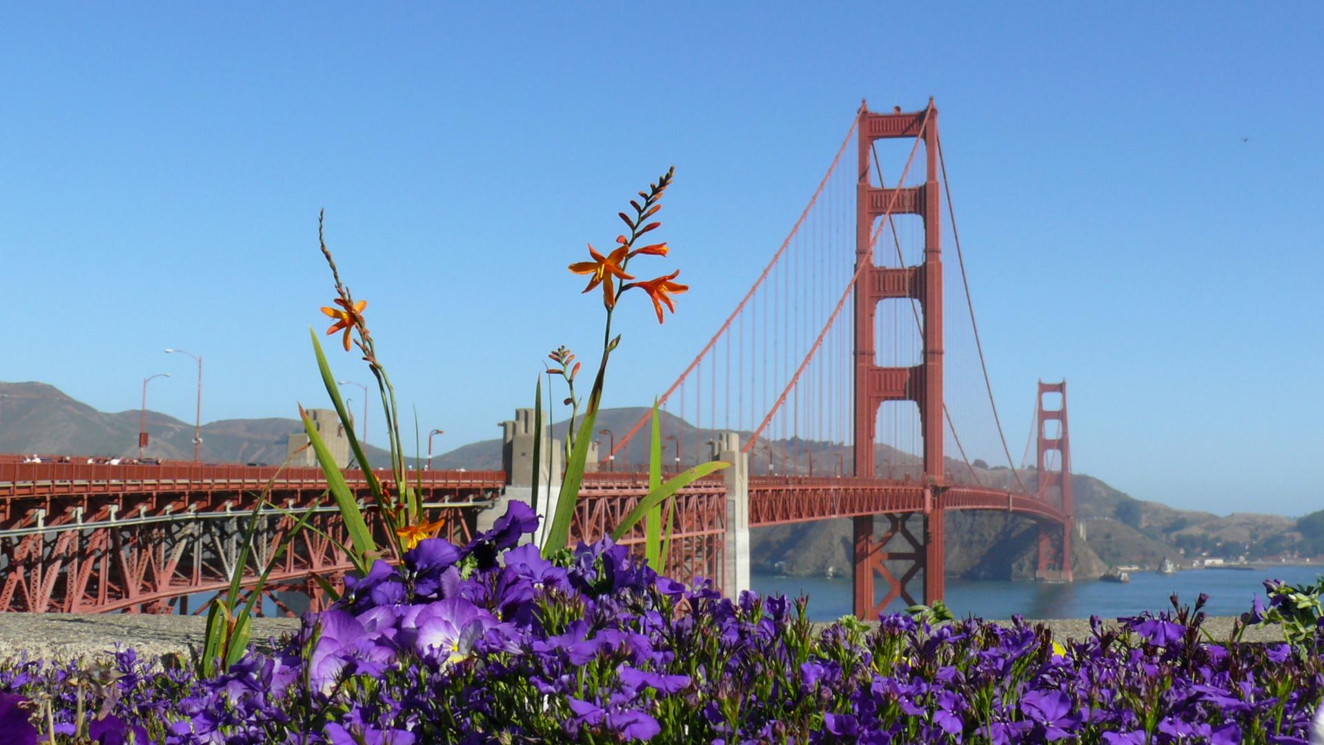 The Wonderful Golden Gate Bridge