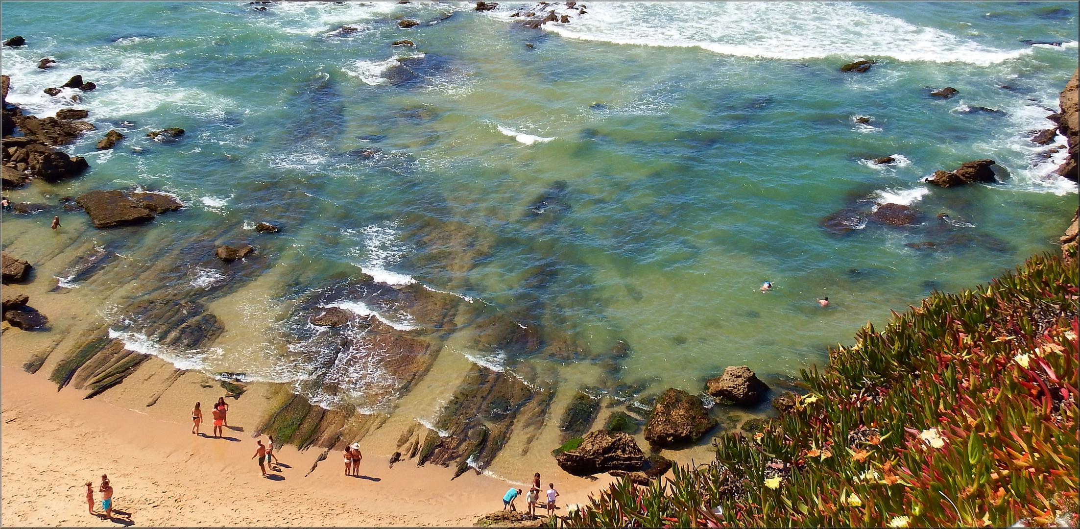 The World Sea Day...