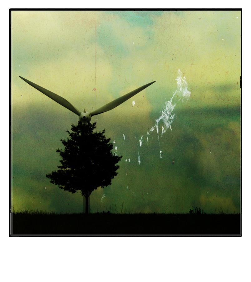 ~~ The X-Tree ~~