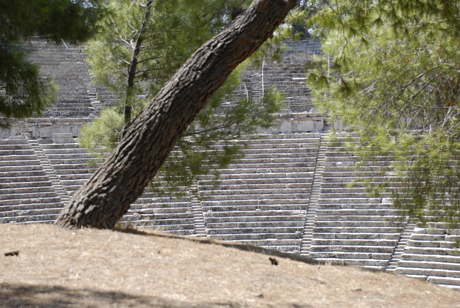Theater von Epidauros #1