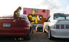 Theos und Yoshis Abenteuer ... in Springfield
