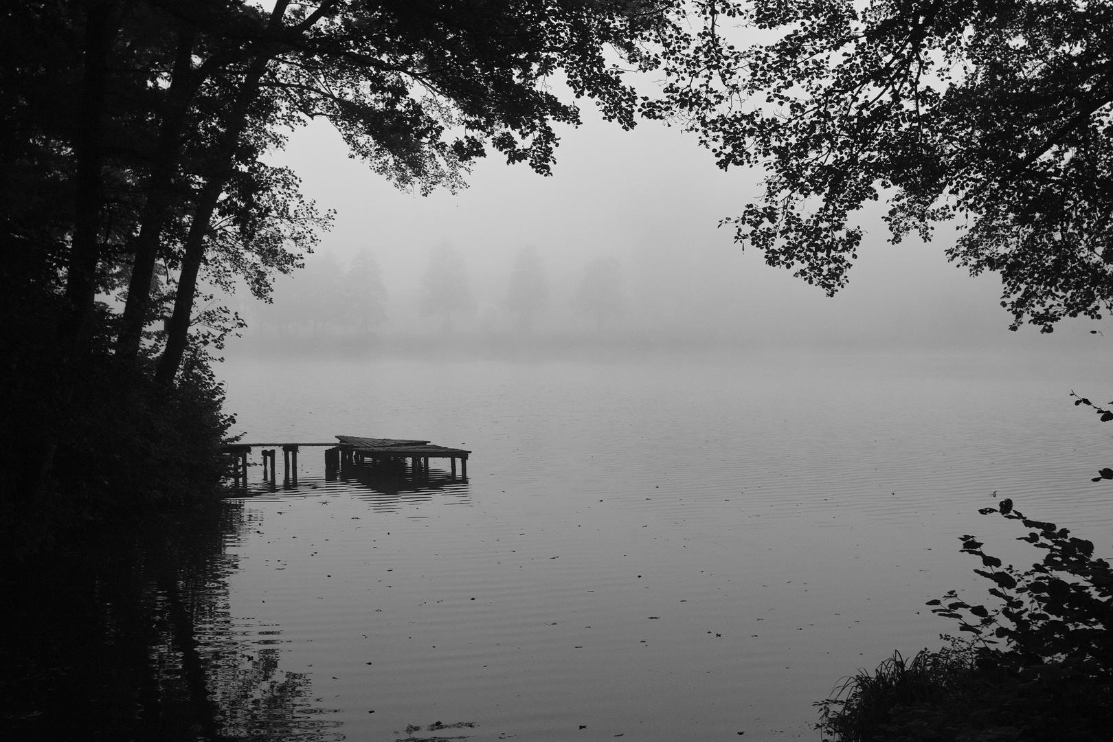 Thiershäuser Teiche: Herbstnebel