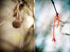 Things in trees