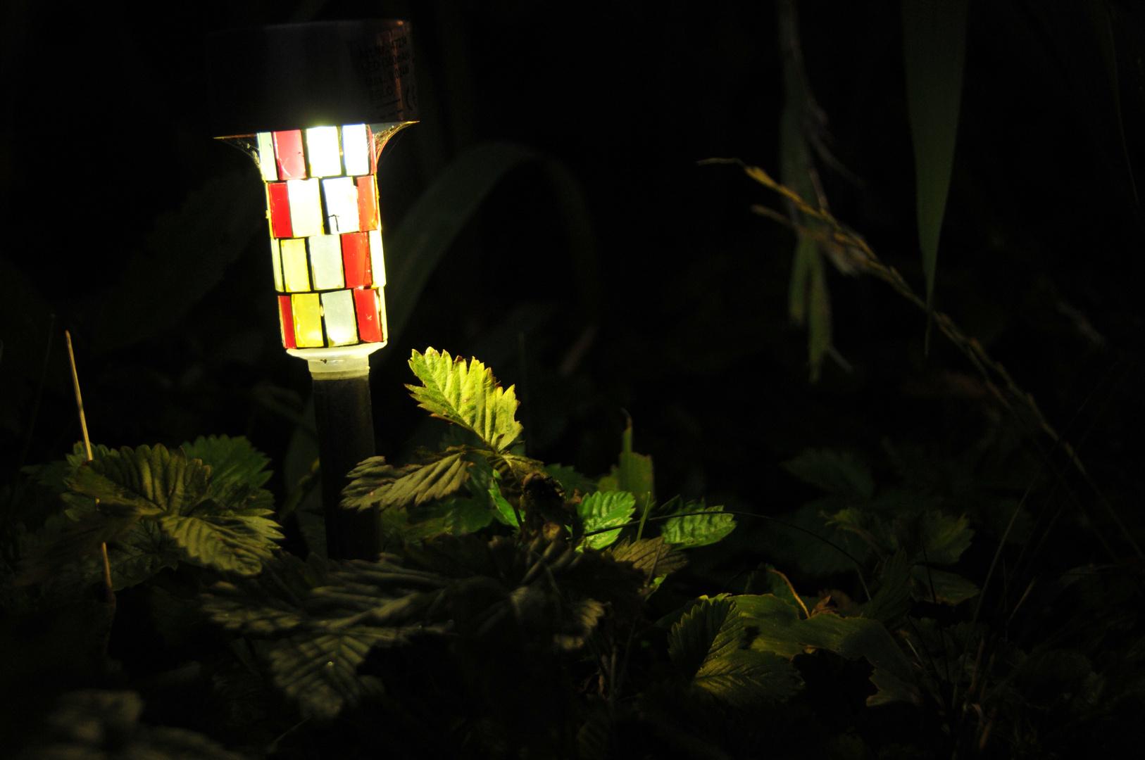 This little Light...