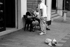 Three men and a dog