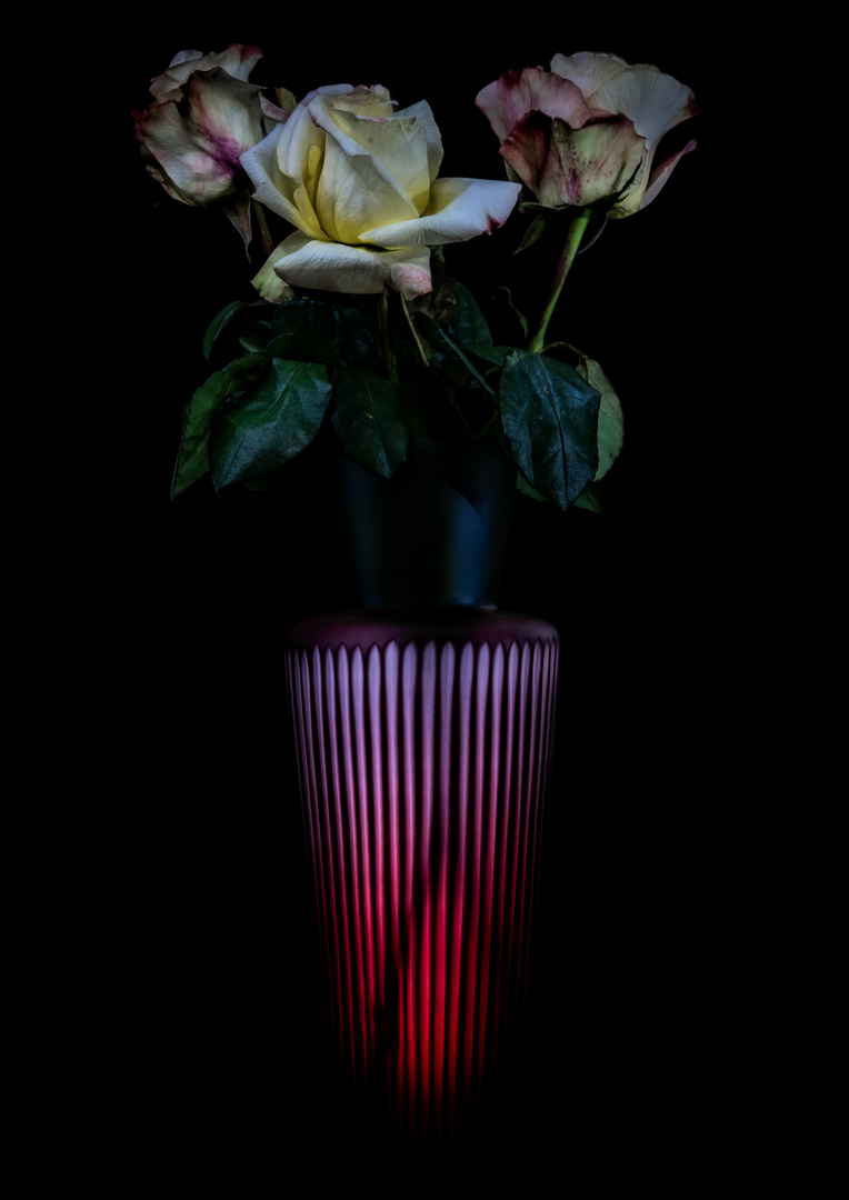 THREE ROSES, A VASE AND ONE LIGHT