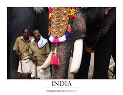Thrissur Pooram [nine]