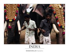 Thrissur Pooram [seven]