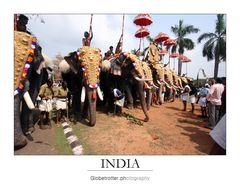 Thrissur Pooram [six]