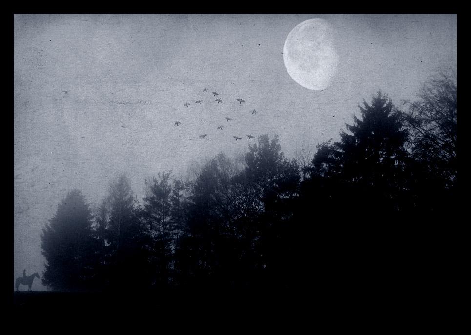 Through The Forest Of Dol Guldur