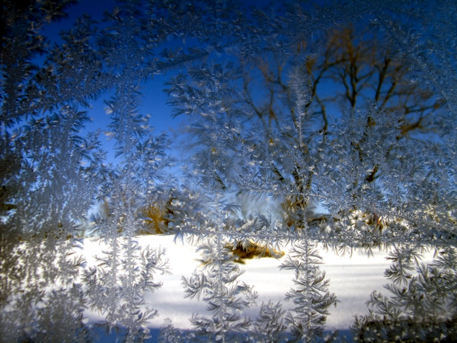 Through the frosted Window