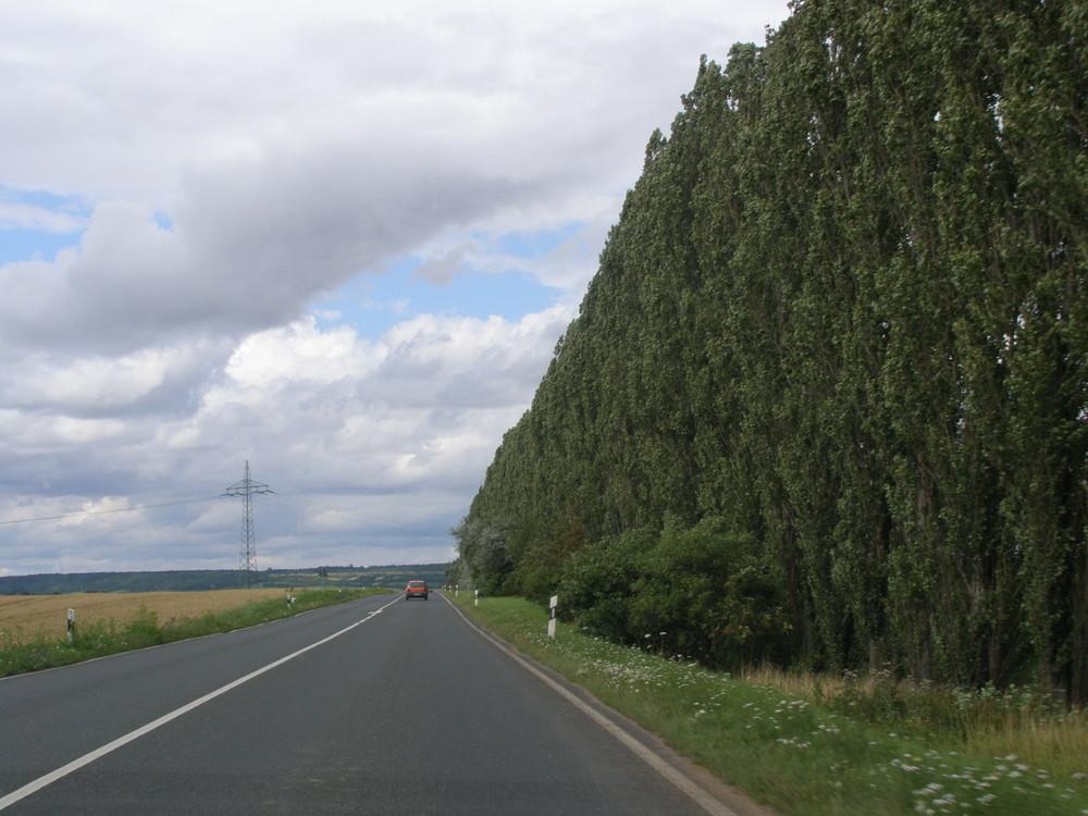 Thüringer Wald, nähe Bad Sulza