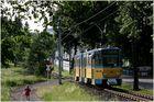 Thüringerwaldbahn [17] - Tabarz